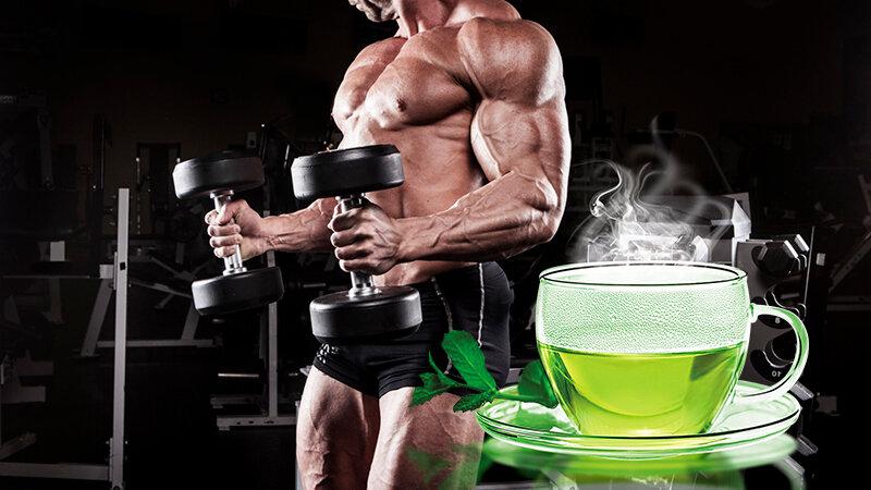 Зеленый чай для бодибилдера, насколько он полезен?   Я фитнес звезда   Яндекс Дзен